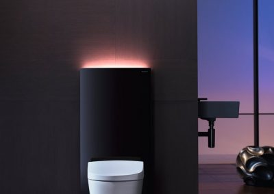 2014-Bathroom-5B-AquaClean-Sela-with-Monolith-Plus_preview
